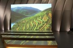 Vignobles du monde au parcours permanent de la Cité du vin de Bordeaux